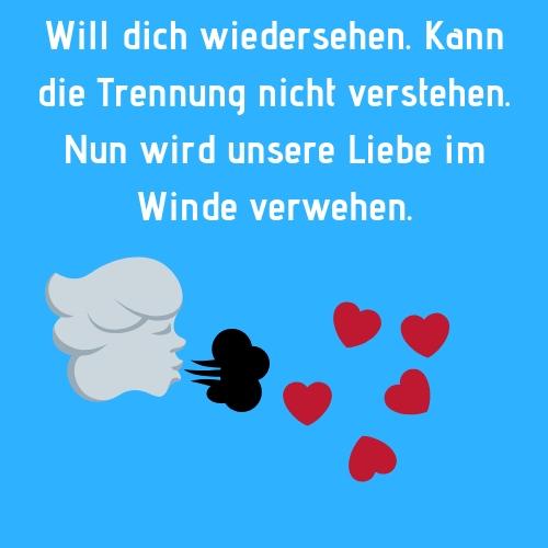 Will dich wiedersehen. Kann die Trennung nicht verstehen. Und wird unserer Liebe im Wind verwehen. (von ex-ratgeber.info)